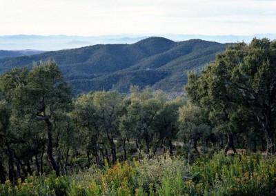 Les Gavarres Nature Reserve