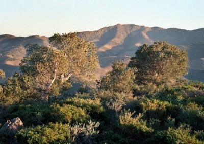 Paraje Natural de Interés Nacional de la Albera