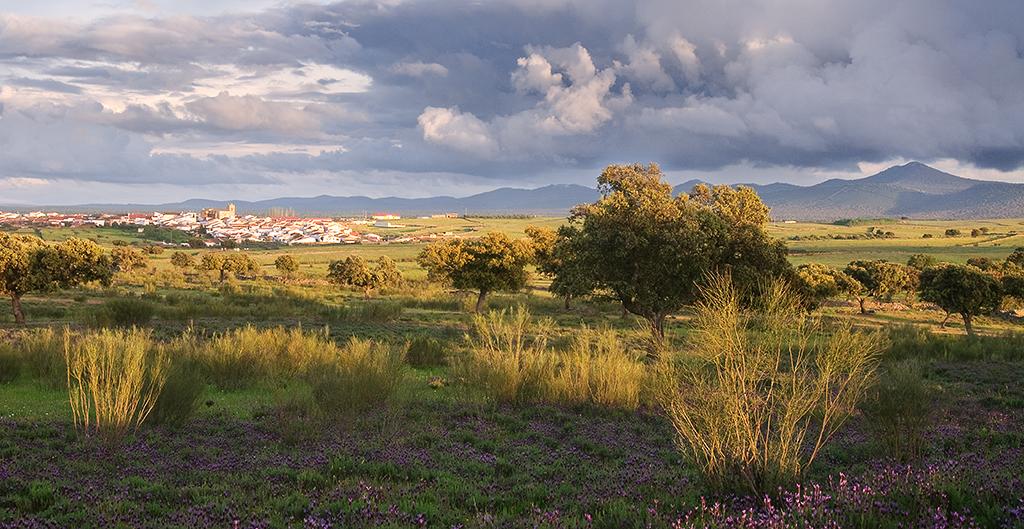 municipio-mancomunidad-sierra-san-pedro-4
