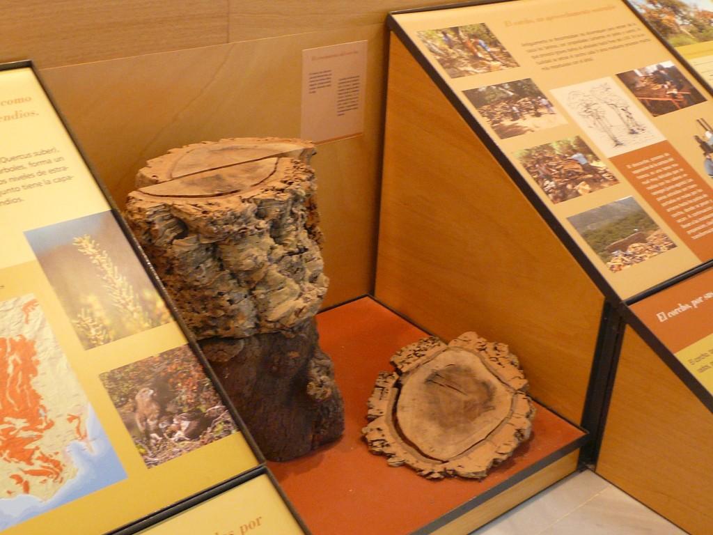 museo-aljibe-1
