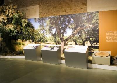 Museo de Identidad del Corcho