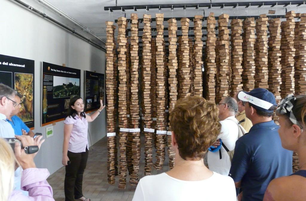 museo-suberoteca-2