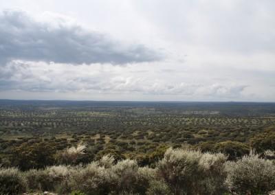 Parc Nacional de Monfragüe