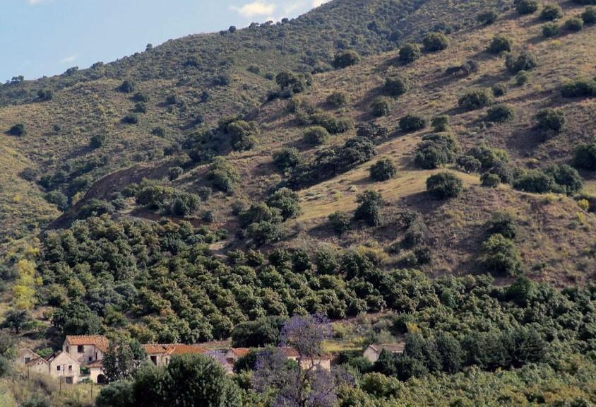 espacio-natural-montes-malaga-2
