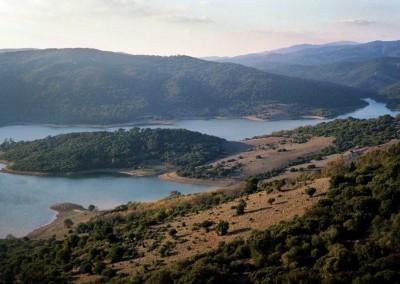 Naturpark Los Alcornocales