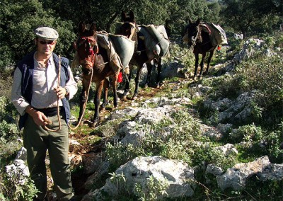 Walking the GR7 across Andalusian reserves and parks